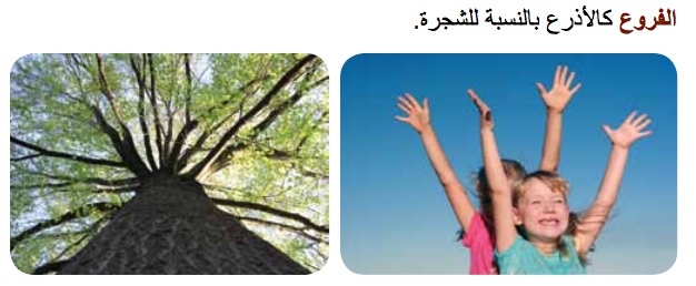 You and a Tree Arabic